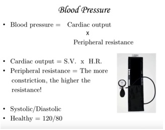 Blood Pressure and Heart Rate help to determine Excess, Deficiency, Heat and Cold patterns.